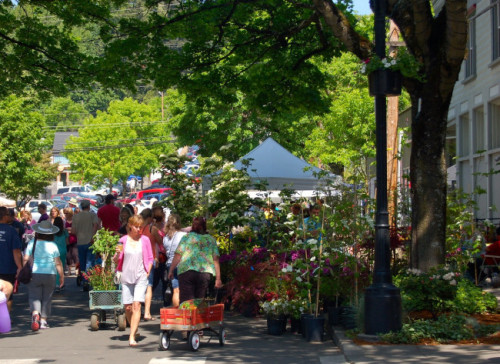 The Camas Plant & Garden Fair 2018 - Downtown Camas | Shops ...